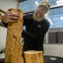 UNI Assistant Director of Campus Services Brian Hadley showcases an ash tree trunk ravaged by the Emerald ash borer.