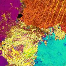 An image taken by UNI's new petrographic microscopes.