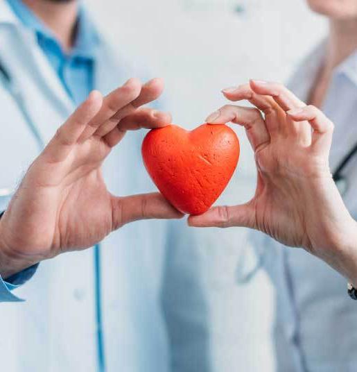 Doctors holding fake heart